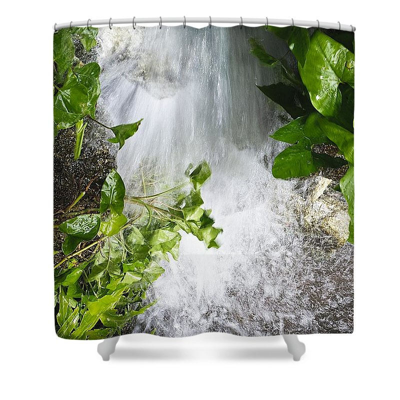 Waterfall Shower Curtain featuring the photograph Waterfall by Kenneth Albin