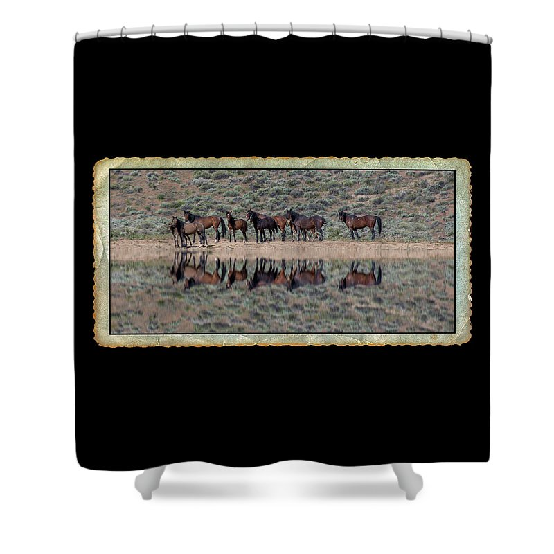 Waterhole Shower Curtain featuring the photograph Waterhole by Richard Cronberg