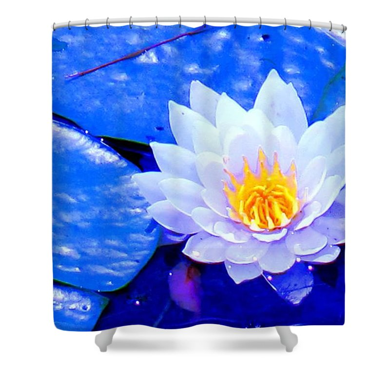 Waterlilly Shower Curtain featuring the photograph Blue Water Lily by Ian MacDonald