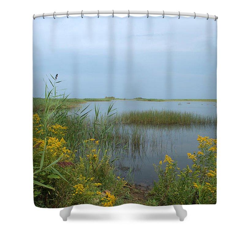 Lake Huron Shower Curtain featuring the photograph Watery Path by Linda Kerkau