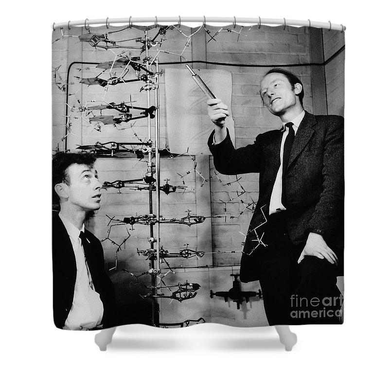 Molecular Biology Shower Curtains