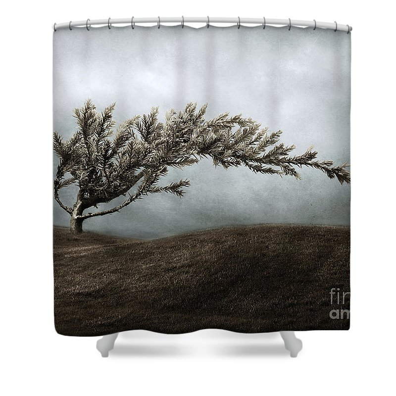 Bend Shower Curtain featuring the photograph We Break And We Bend And We Turn Ourselves Inside Out by Dana DiPasquale