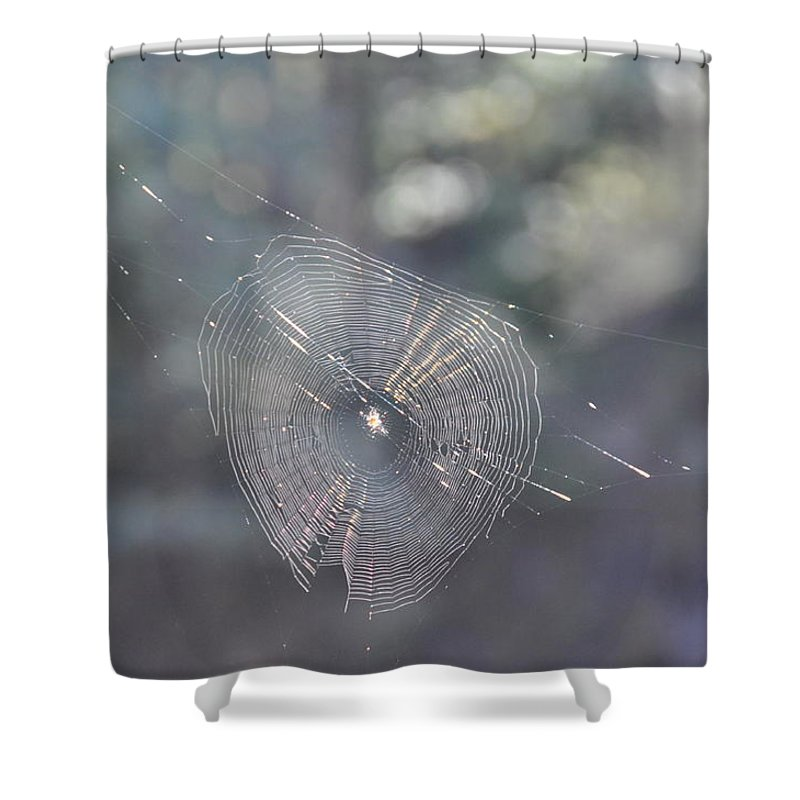 Spider Shower Curtain featuring the photograph Web Reflections by Rich Bodane