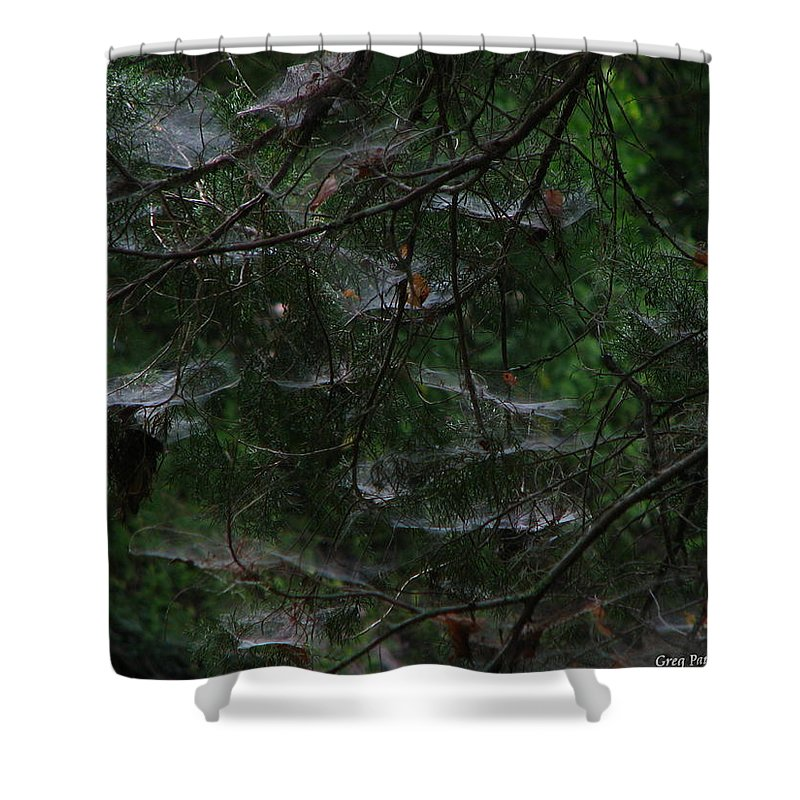 Patzer Shower Curtain featuring the photograph Webs Of A Tree by Greg Patzer