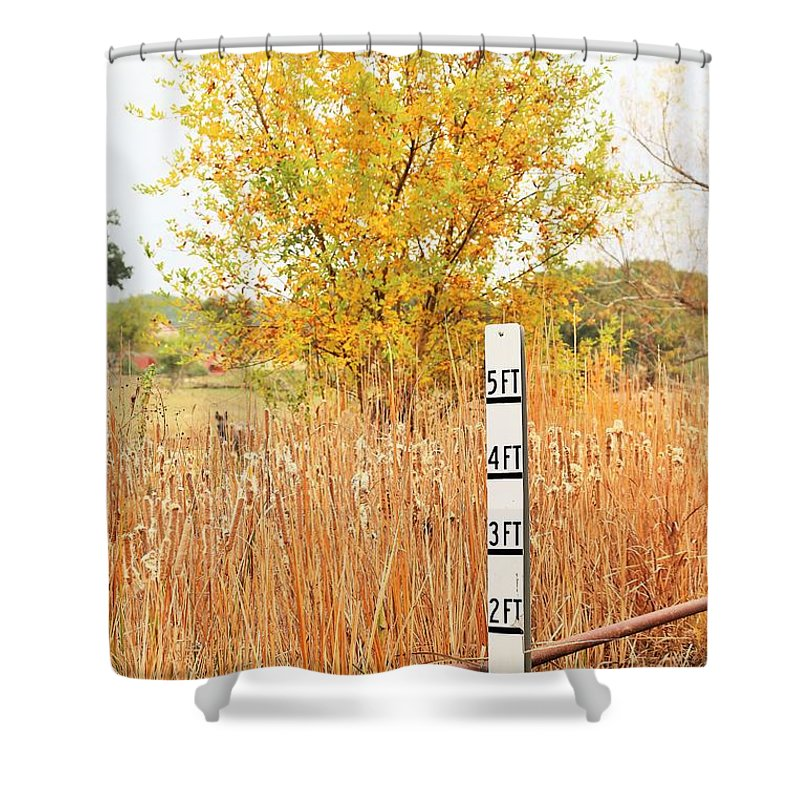 Shower Curtain featuring the photograph Weeds 035 by Jeff Downs