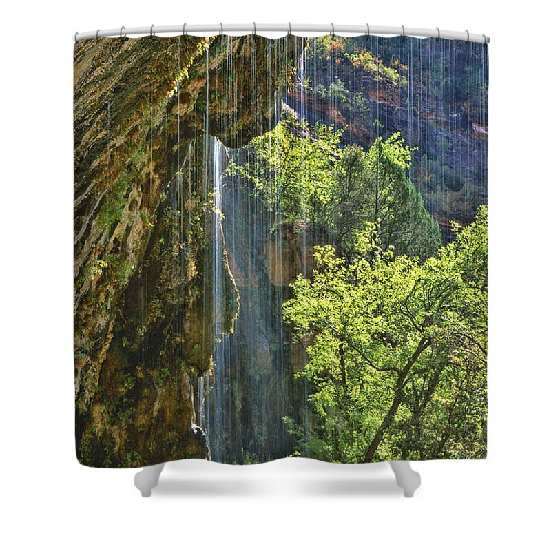 Southwest Shower Curtain featuring the photograph Weeping Rock - Zion Canyon by Sandra Bronstein