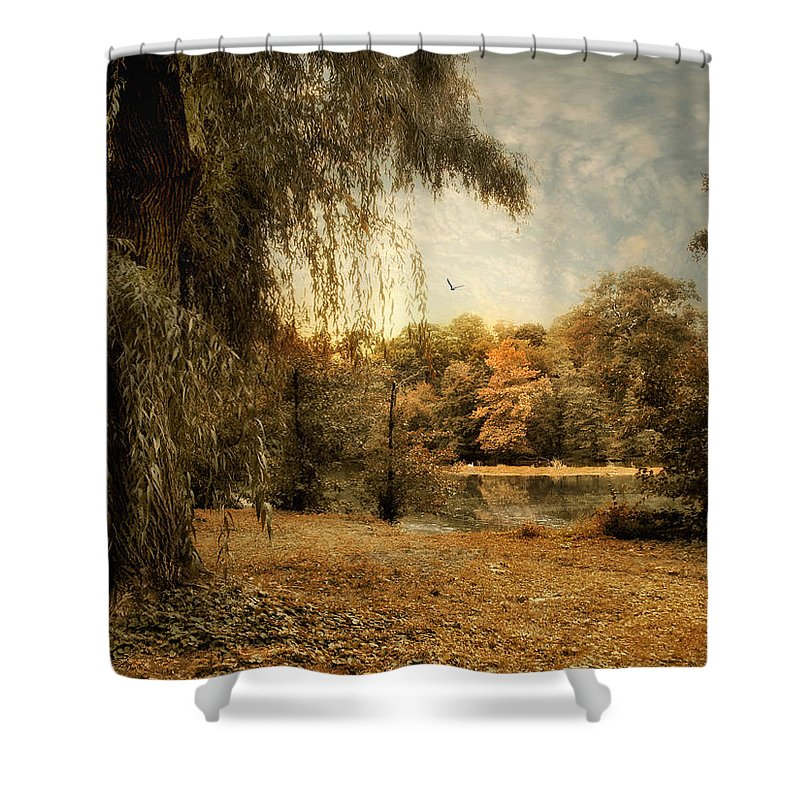 Nature Shower Curtain featuring the photograph Weeping Willow by Jessica Jenney