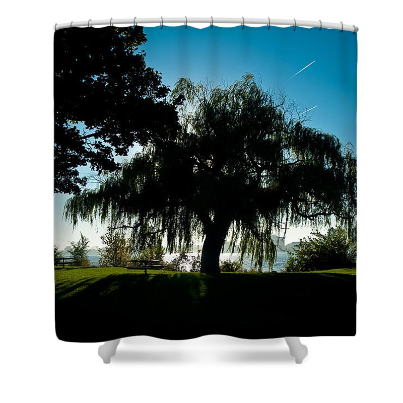 Willow Shower Curtain featuring the photograph Weeping Willow Silhouette by Steven Dunn