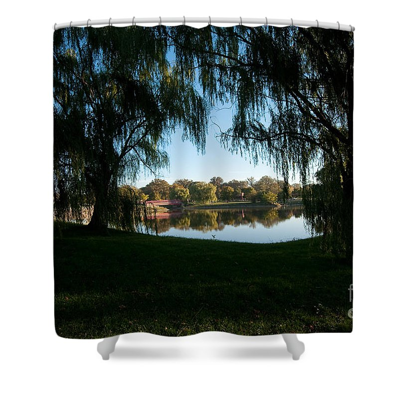 Weeping Shower Curtain featuring the photograph Weeping Willows by Steven Dunn