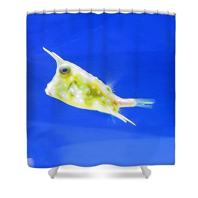 Aquarium Shower Curtain Featuring The Photograph Weird Looking Fish By Carolyn Fletcher