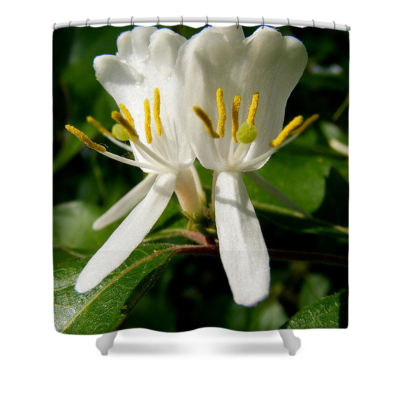 Welcome My Friends Shower Curtain featuring the photograph Welcome My Friends by Ed Smith