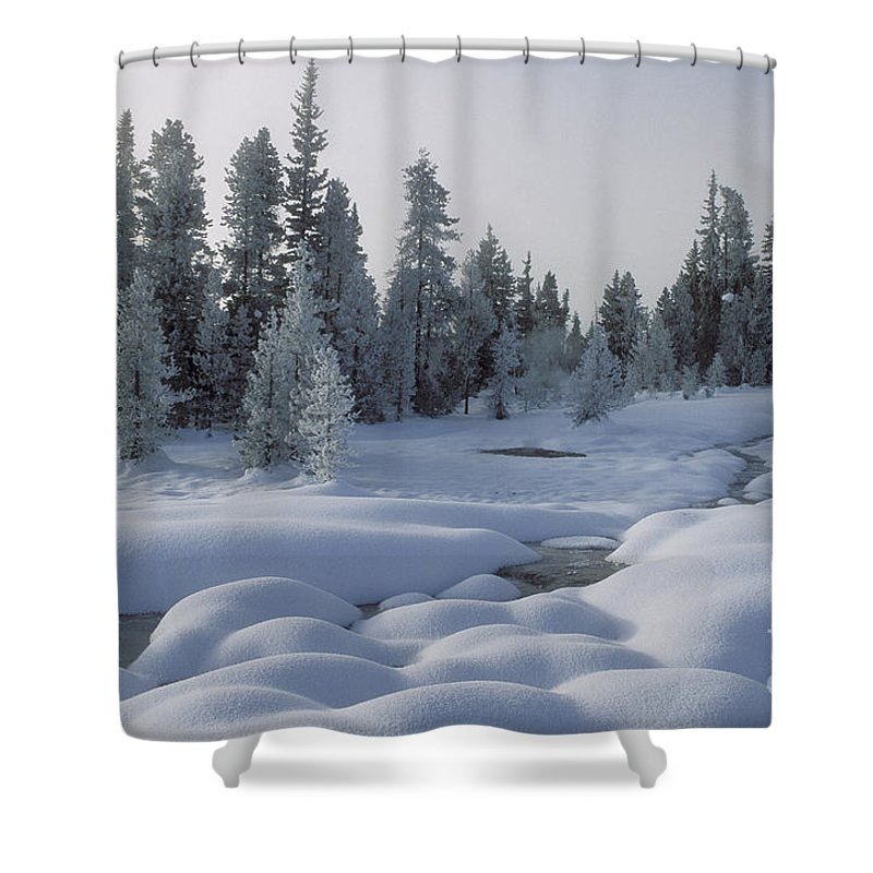 Yellowstone Shower Curtain featuring the photograph West Thumb Snow Pillows by Sandra Bronstein