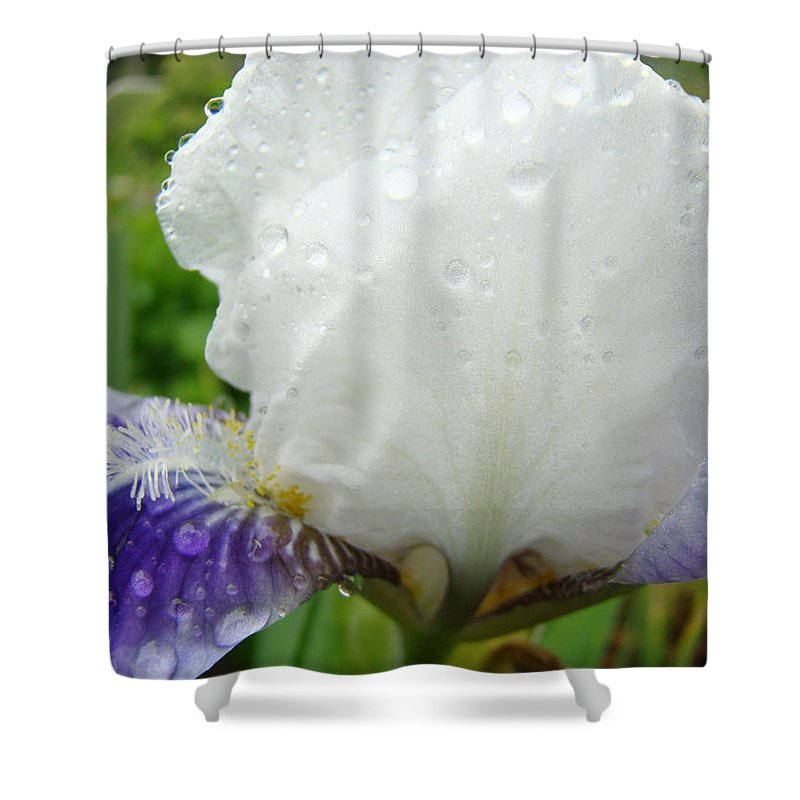 Iris Shower Curtain featuring the photograph Wet Flower Raindrops Art Iris Flower Spring Baslee Troutman by Baslee Troutman
