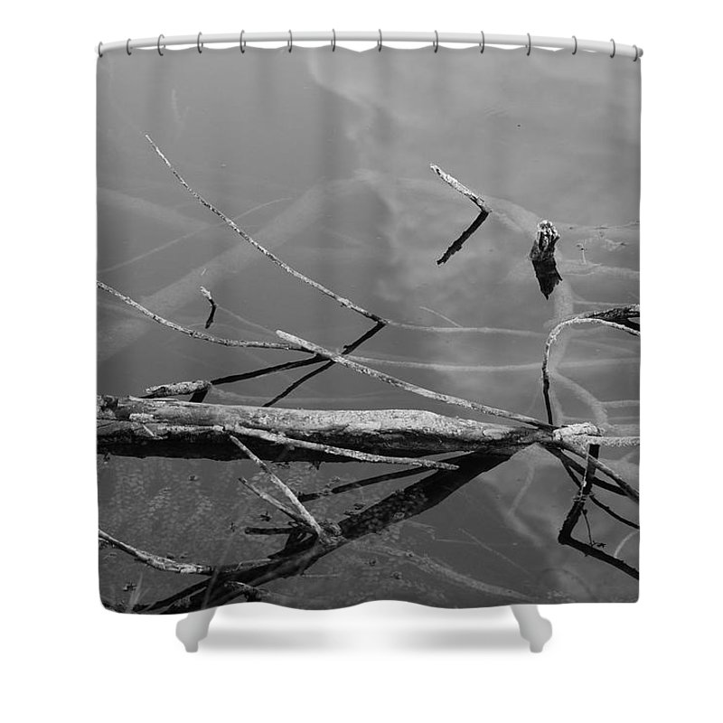 Black And White Shower Curtain featuring the photograph Wet Wood by Rob Hans