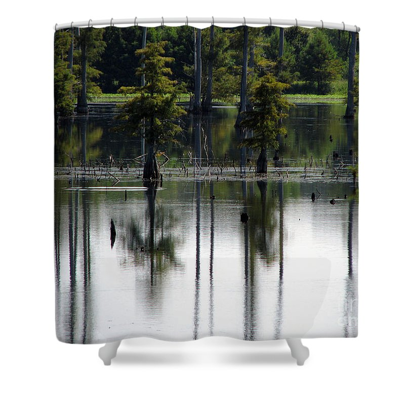 Wetlands Shower Curtain featuring the photograph Wetland by Amanda Barcon
