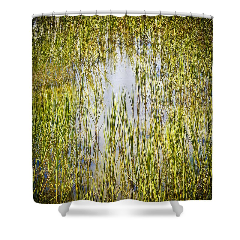 Wetlands Shower Curtain featuring the photograph Wetlands by Marilyn Hunt