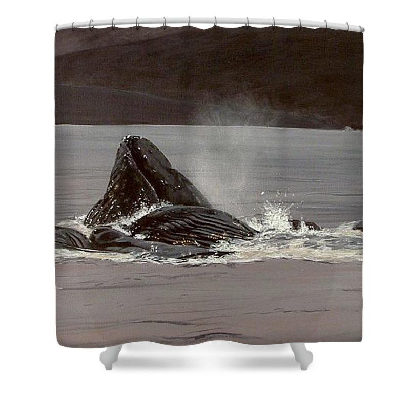 Whale Shower Curtain featuring the painting Whales Feeding by Shawn Stallings