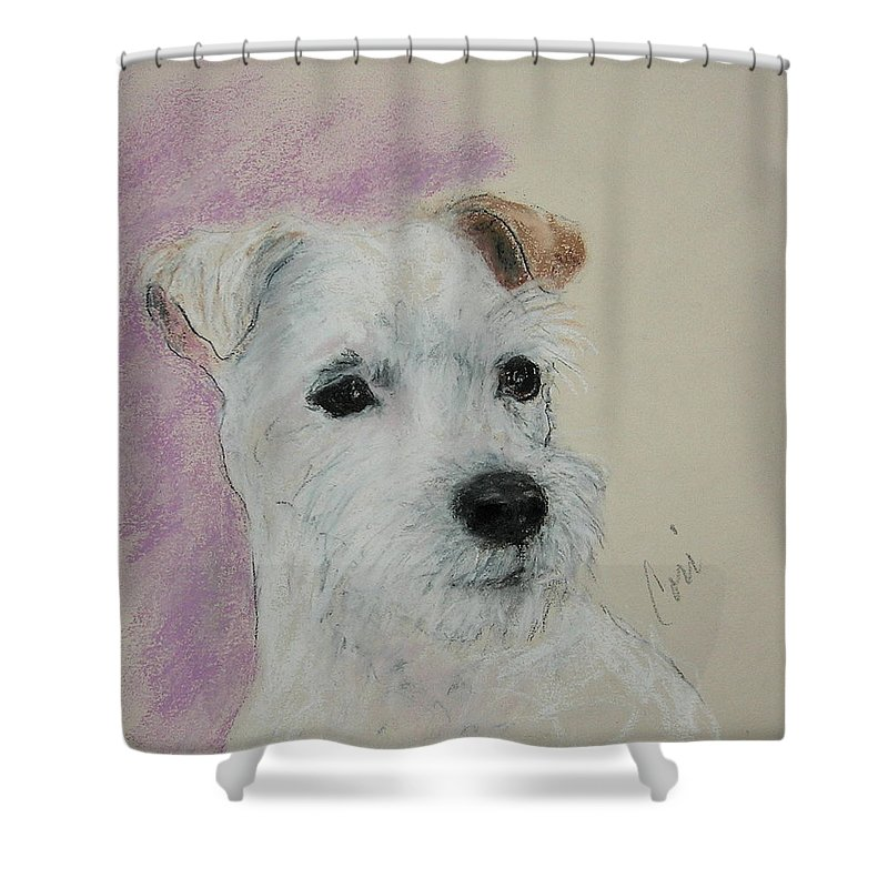 Pastel Shower Curtain featuring the drawing What A Riot by Cori Solomon