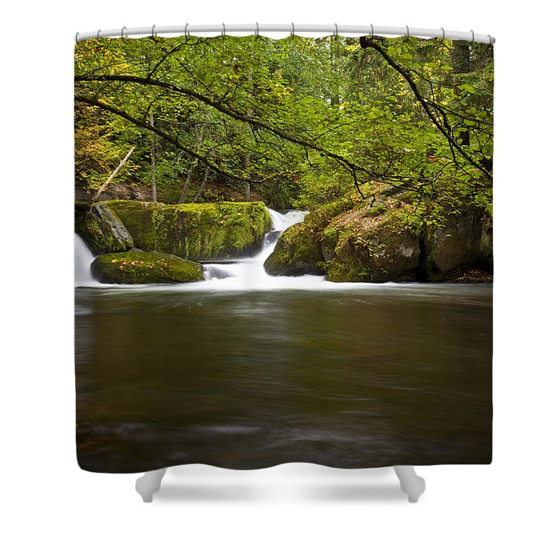 Water Shower Curtain featuring the photograph Whatcom Creek Gorge by Karen Ulvestad