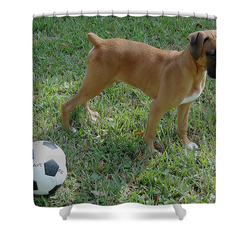 Dog Shower Curtain featuring the digital art When I Was Just A Pup by DigiArt Diaries by Vicky B Fuller