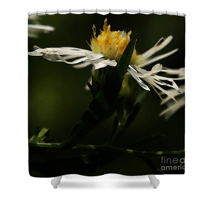 Aster Shower Curtain featuring the photograph White Aster by Linda Shafer