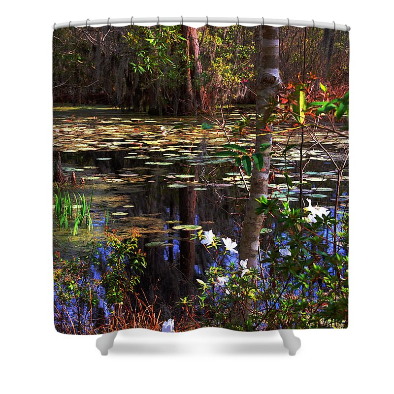 Swamp Shower Curtain featuring the photograph White Azaleas In The Swamp by Susanne Van Hulst