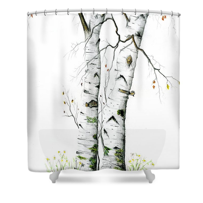 White Birch Shower Curtain featuring the painting White Birch by Mary Tuomi