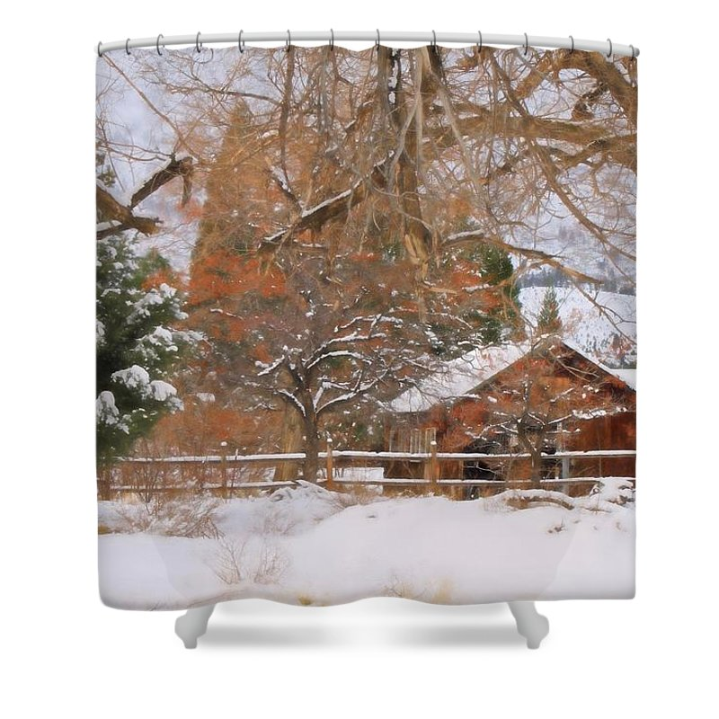 Verdi Shower Curtain featuring the photograph White December by Donna Kennedy