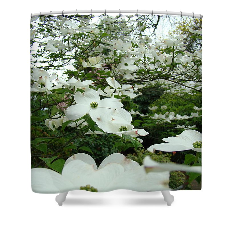 Dogwood Shower Curtain featuring the photograph White Dogwood Flowers 6 Dogwood Tree Flowers Art Prints Baslee Troutman by Baslee Troutman