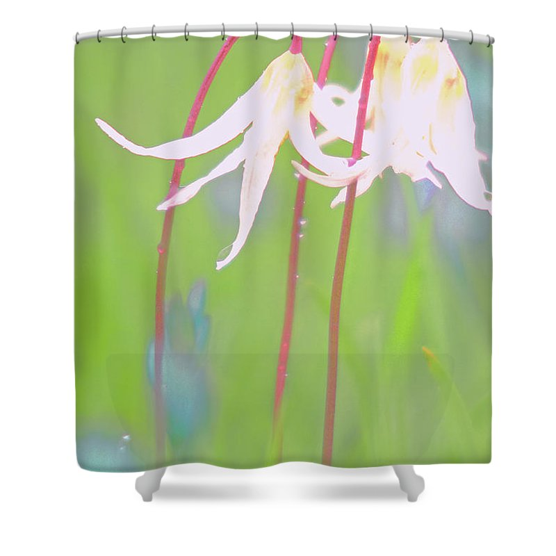 Flora Shower Curtain featuring the photograph White Fawn Lilies In The Rain by Jill Greenaway