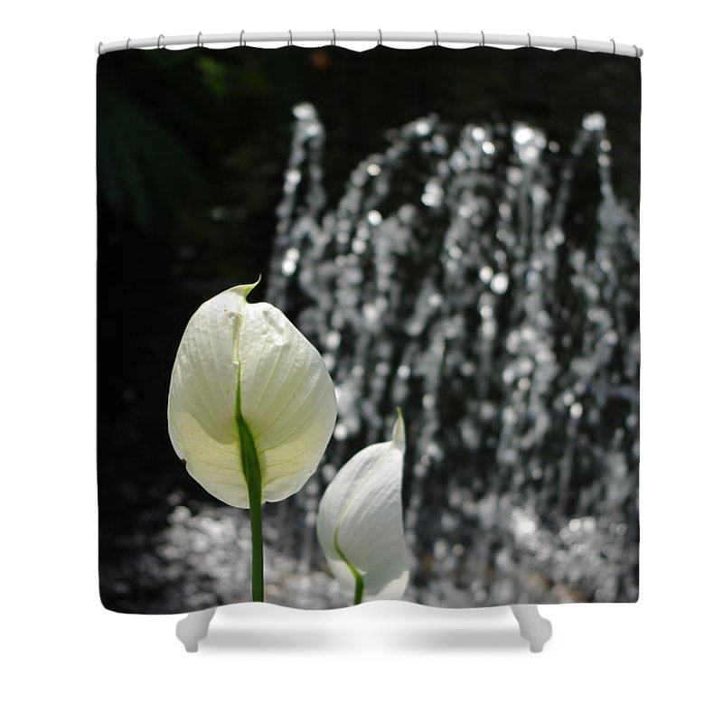 Fountain Shower Curtain featuring the photograph White Flower At Fountain by Alice Markham