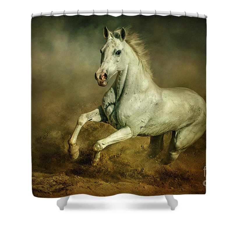 Action Shower Curtain Featuring The Photograph White Horse Running Wild Equestrian Art Photography By Dimitar Hristov