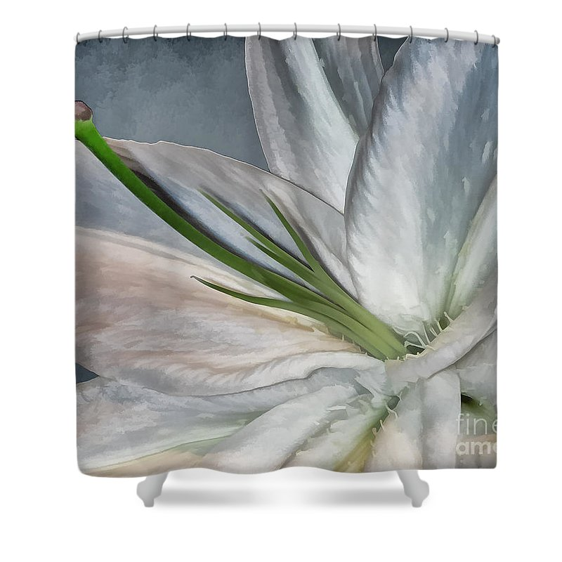 Lily Shower Curtain featuring the photograph White Lily by Margaux Dreamaginations