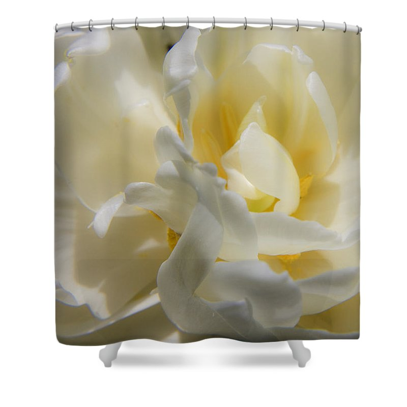 White Shower Curtain featuring the photograph White Peony Tulip Detail by Teresa Mucha