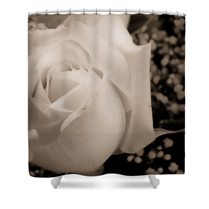 Flowers Shower Curtain featuring the photograph White Rose Bw Fine Art Photography Print by James BO Insogna