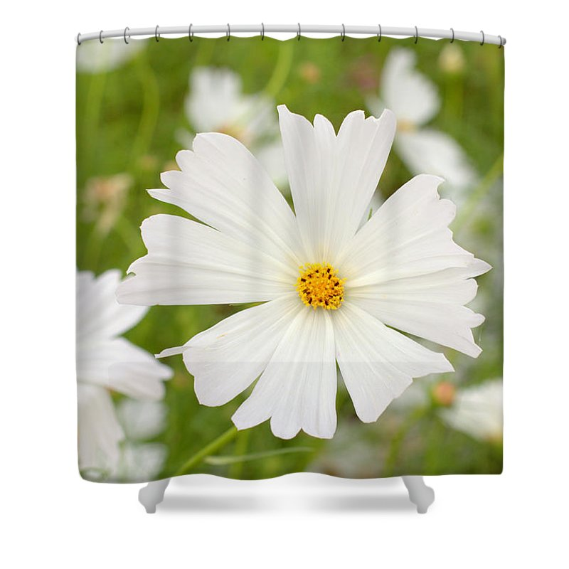 White Spanish Flowers Shower Curtain For Sale By Diane Yorke