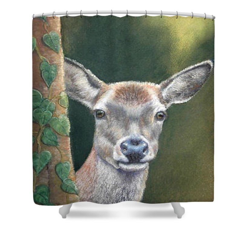 Rainforest Shower Curtain featuring the painting White Tail Doe At Ancon Hill by Ceci Watson
