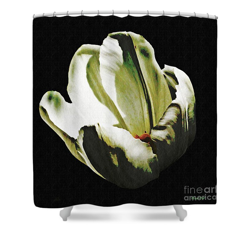 Tulip Shower Curtain featuring the photograph White Tulip by Sarah Loft