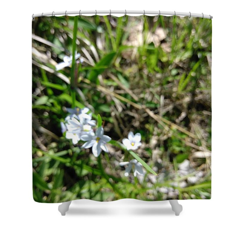 Flower Shower Curtain featuring the photograph White Wild Flower by Alisha Albin