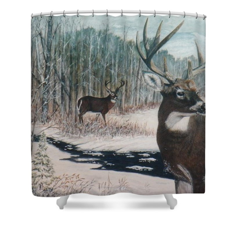 Deer; Snow; Creek Shower Curtain featuring the painting Whitetail Deer by Ben Kiger