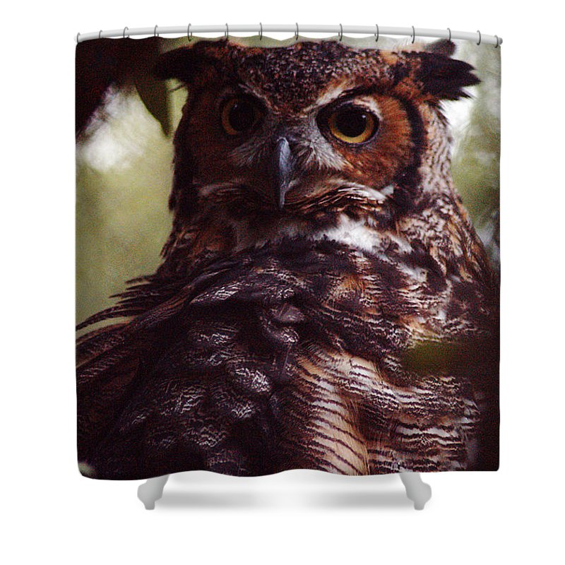 Clay Shower Curtain featuring the photograph Who by Clayton Bruster