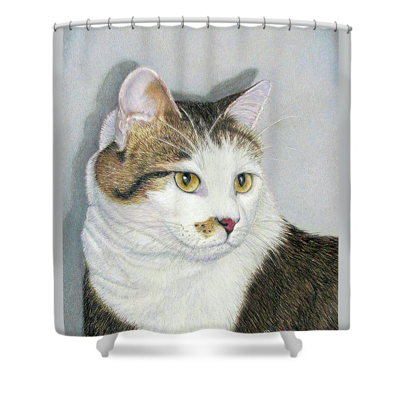 Pet Portraits Shower Curtain featuring the drawing Who Me by Beverly Fuqua