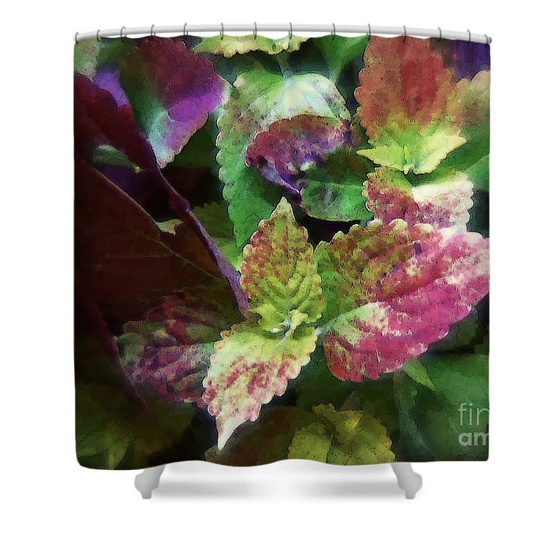 Coleus Shower Curtain featuring the painting Who Needs Flowers by RC DeWinter