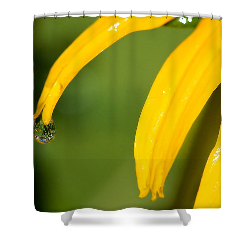 Lisa Knechtel Shower Curtain featuring the photograph Whole World Water Drop by Lisa Knechtel