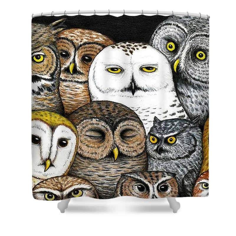 Art Shower Curtain featuring the painting Who's Hoo by Don McMahon