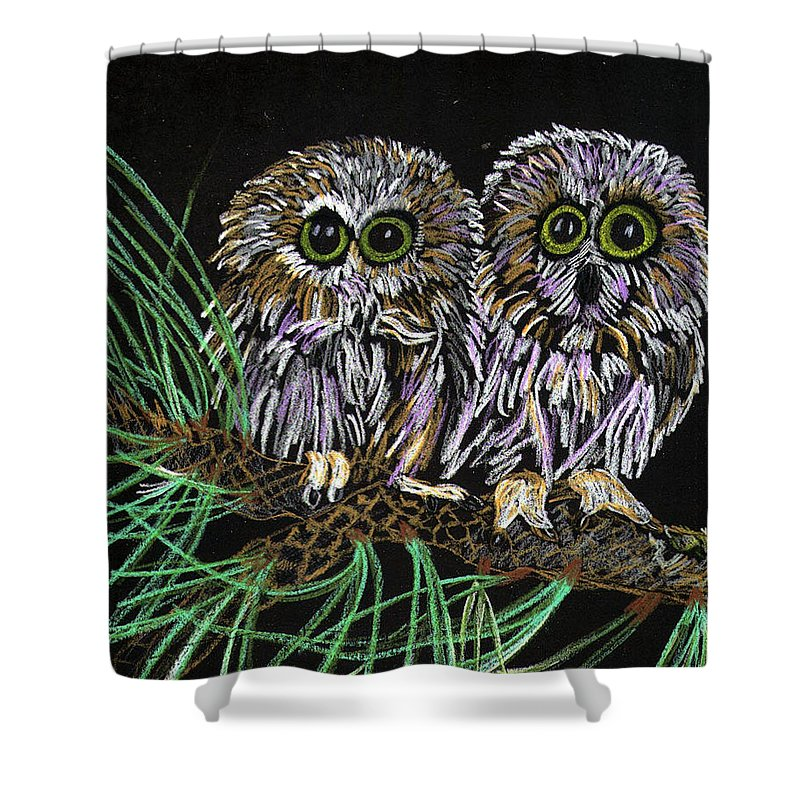 Owls Shower Curtain featuring the painting Whos Whoo by Arlene Wright-Correll