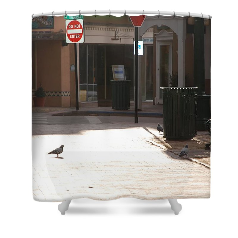 Dog Shower Curtain featuring the photograph Why Question Mark by Rob Hans