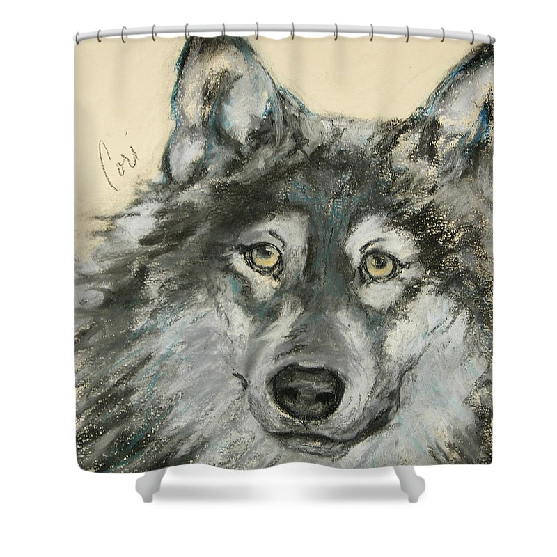 Wolf Shower Curtain featuring the drawing Wild At Heart by Cori Solomon