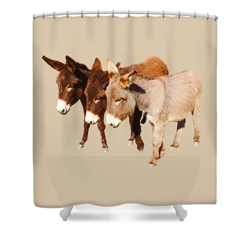Donkey Shower Curtain featuring the digital art Wild Burro Buddies by Sandra O'Toole