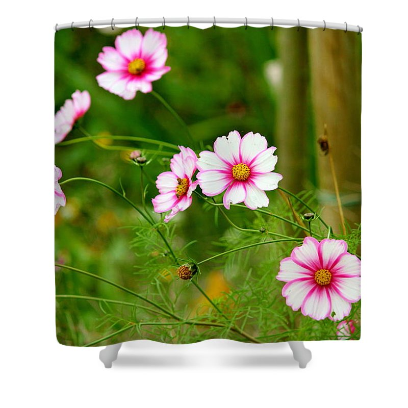 September Charm Shower Curtain featuring the photograph Wild Charm by Kevin F Cook